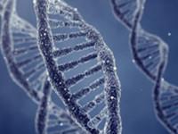 Informationen zu Proteinen und Aminosäuren